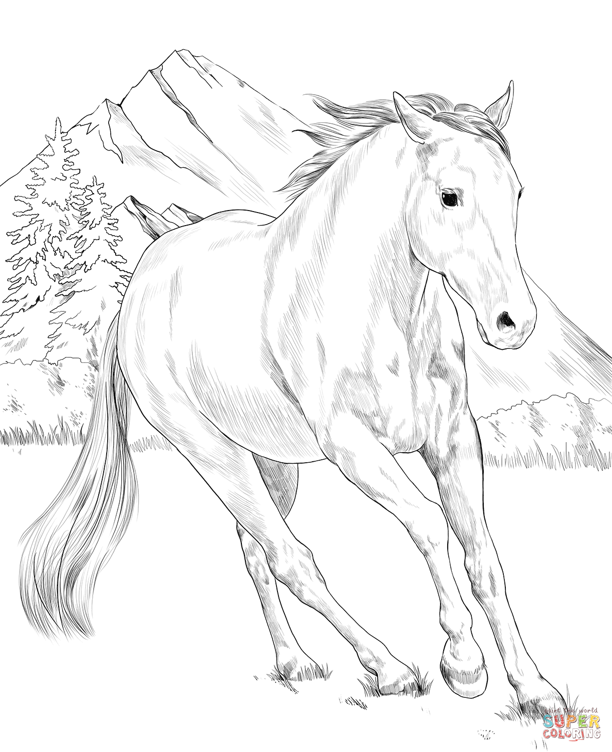Pin By Bethany White On Imagenes Y Recursos Horse Coloring Books Animal Coloring Pages Horse Coloring [ 1500 x 1222 Pixel ]