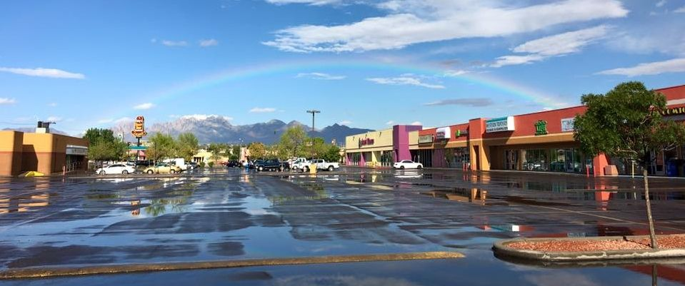 Decisions, Decisions: The Results are in! — Mountain View Market Co+op