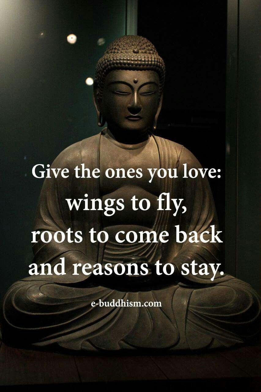 Buddha Quotes About Friendship Pinkerry Boekestein On Zen Life  Pinterest  Buddha Buddha