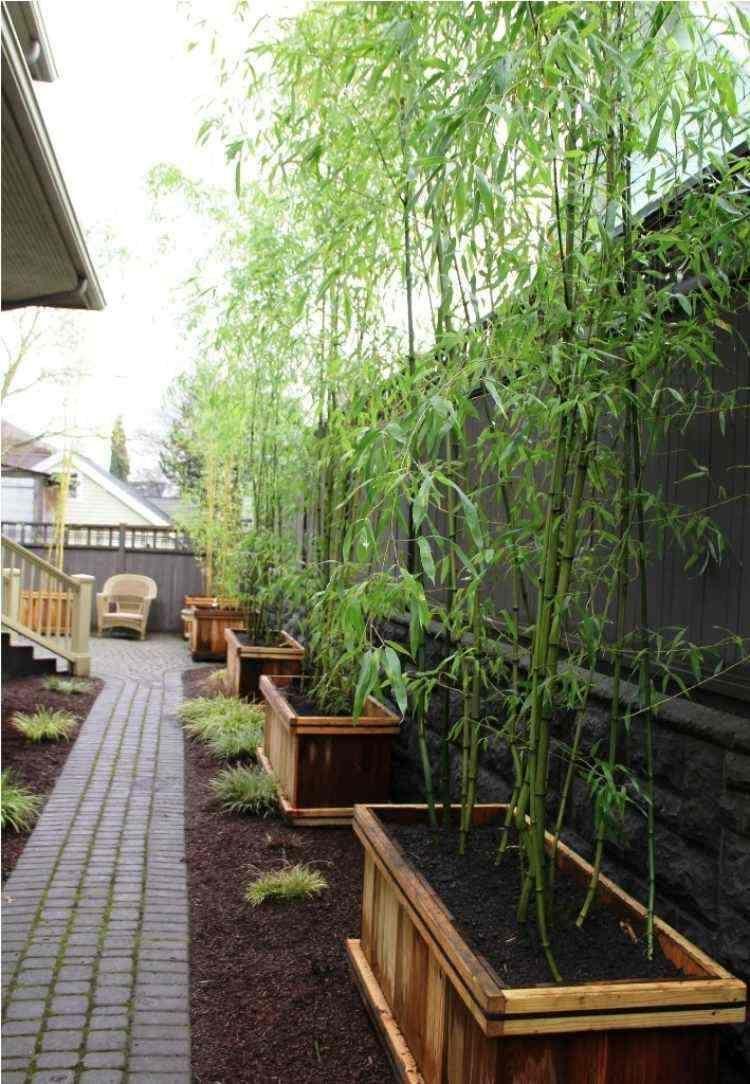 bac fleurs bois diy bambou jardin all e pav s devant. Black Bedroom Furniture Sets. Home Design Ideas