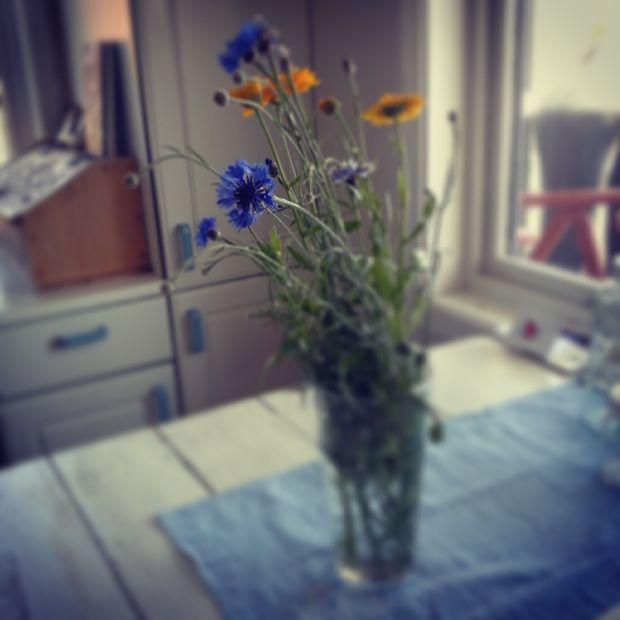 From the kitchen garden
