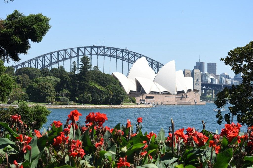 a3e3d7e641523dacb4e49ee63d4d8be9 - What To Do In Royal Botanic Gardens Sydney