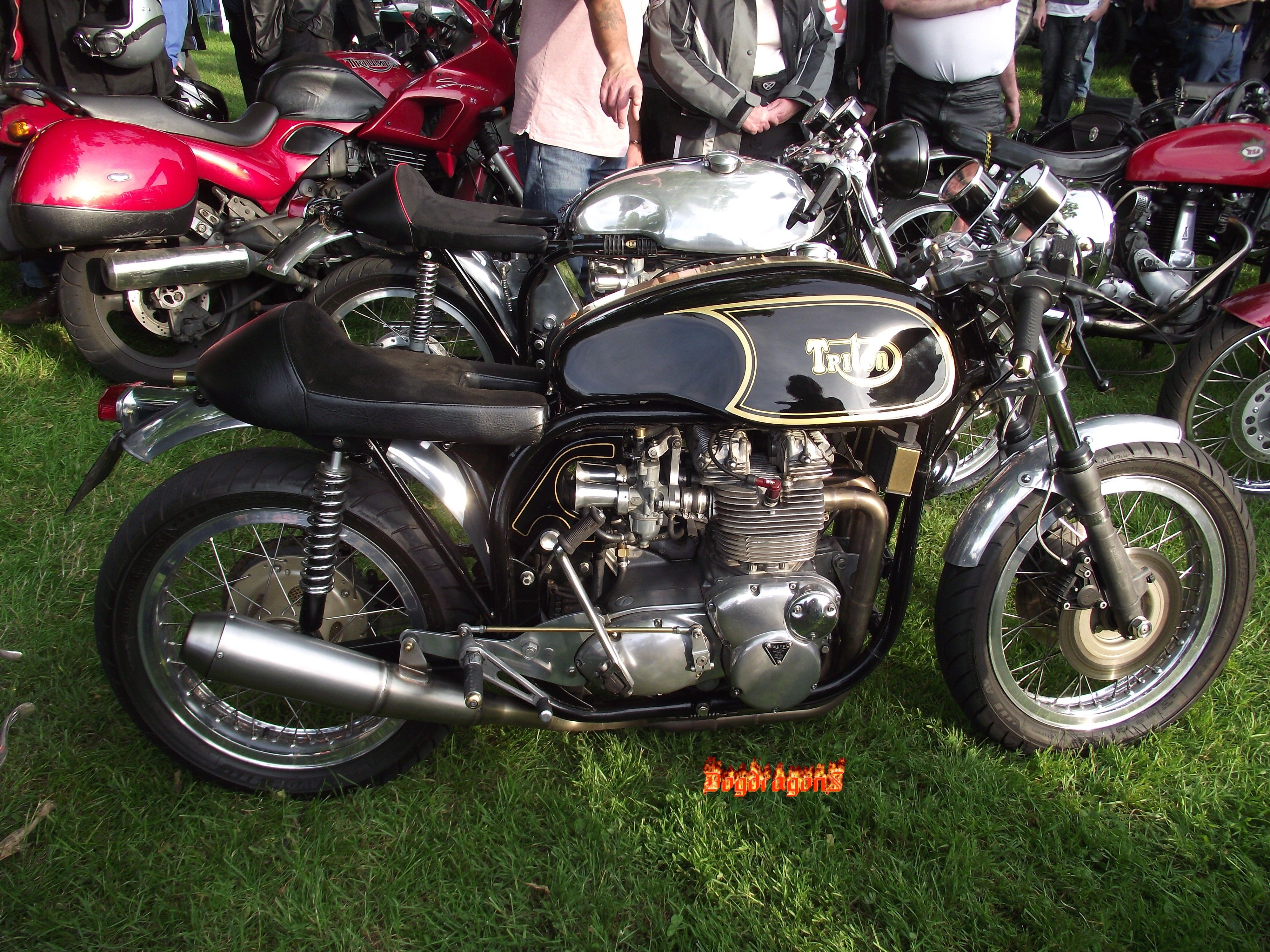 Trident triton google search motorcycles pinterest cafe trident triton google search fandeluxe Gallery