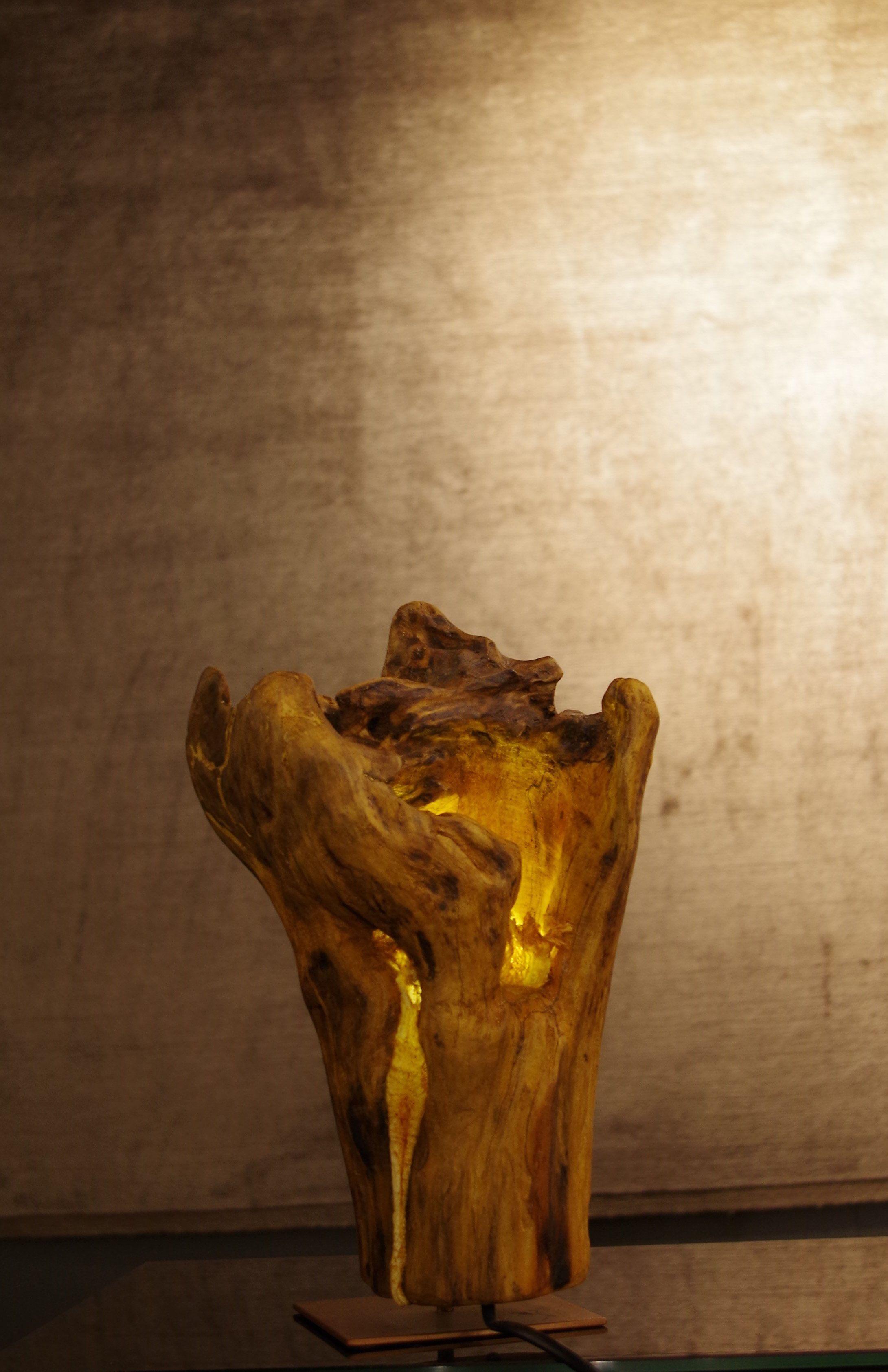 Pin Von Peter Ondrejka Auf Driftwood Design Treibholz Schwemmholz Lampe