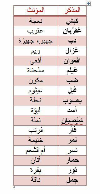 مذكر ومؤنث الدواب Learn Arabic Online Learn Arabic Language Arabic Language