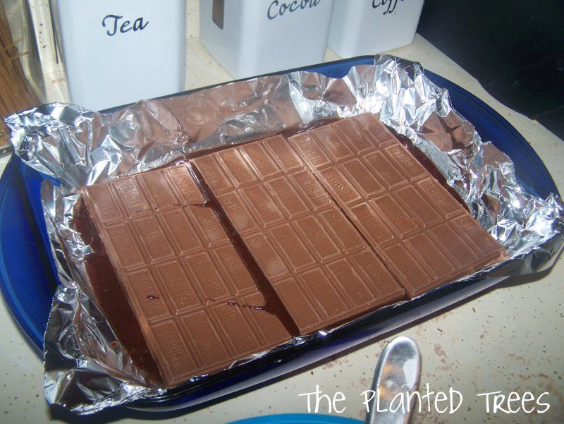 The Planted Trees: Tasty Tuesday: Symphony Brownies