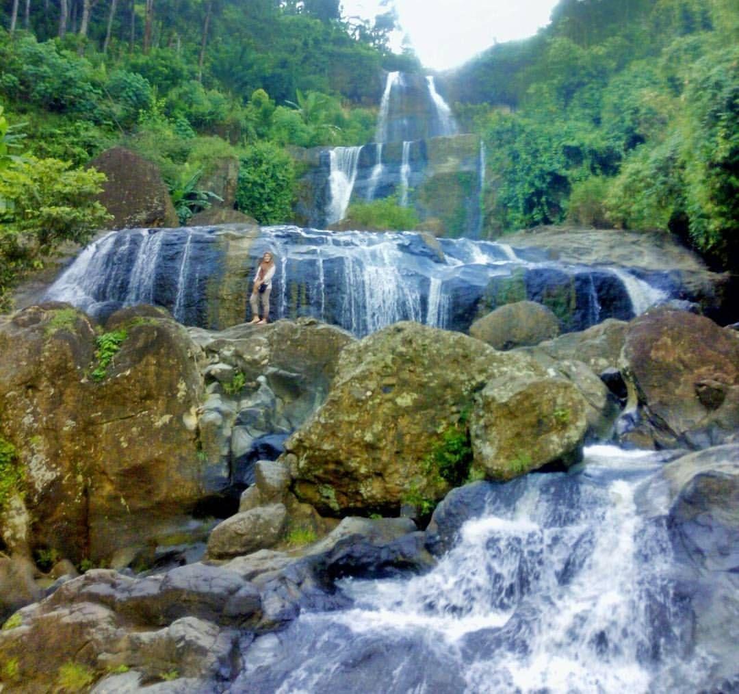 Tempat Wisata Alam Surabaya