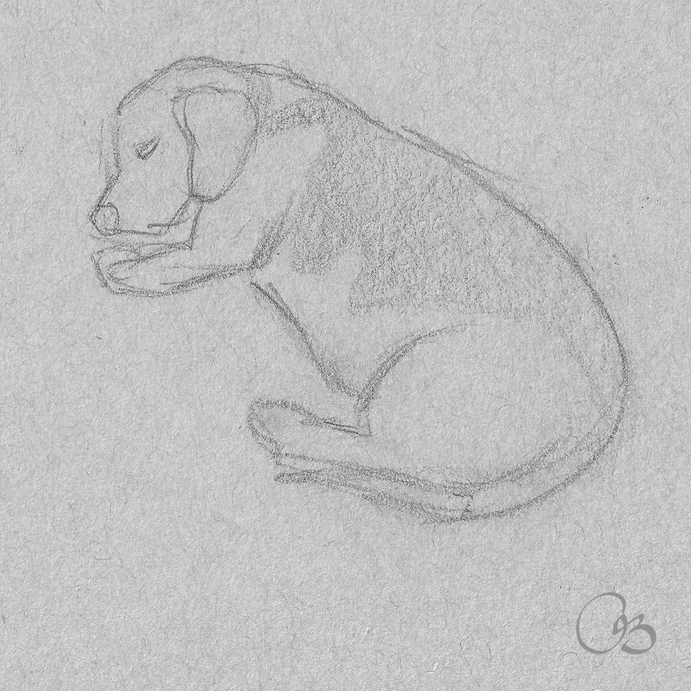 Dog Sketch Drawing Dog Sketch Dog Sketch Easy Sleeping Drawing