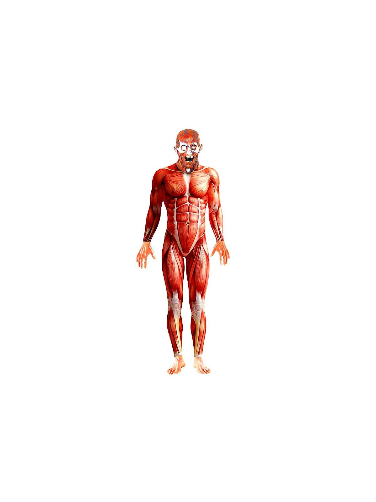 Anatomy Man Suit Mens Horror Costumes At Wholesalecostumeclub