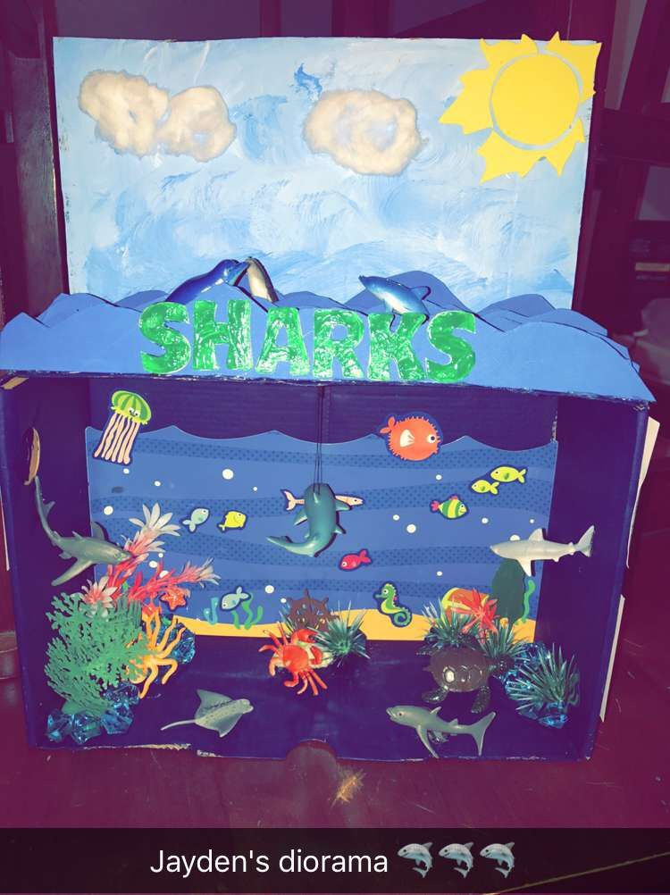 Kids Diorama With Details: Ocean Diorama