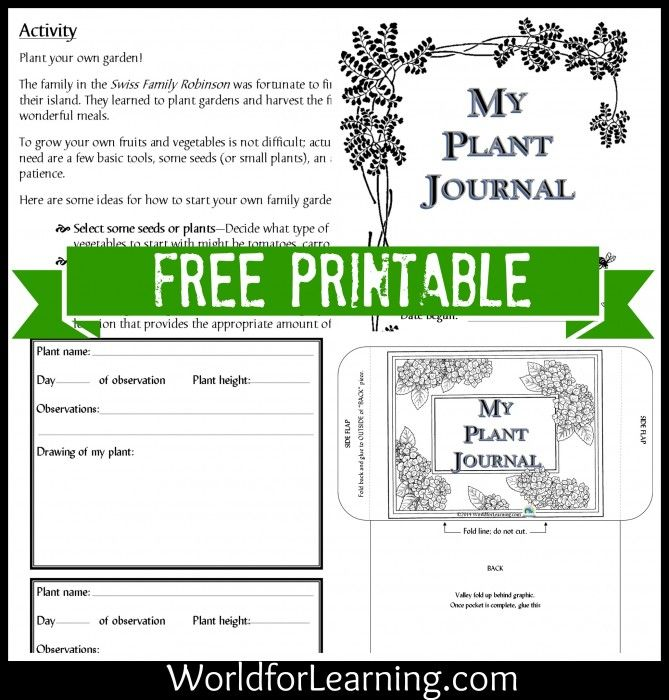 Free Printable Plant Observation Journal