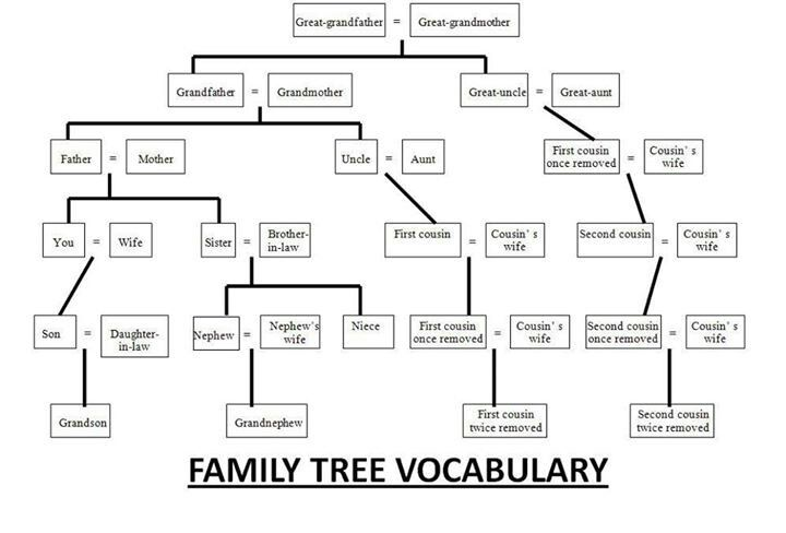 Family tree course 1 tefl stuff pinterest family trees family tree course 1 ccuart Choice Image