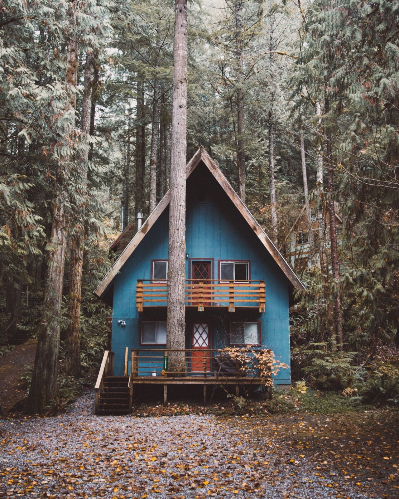 Modern Forest House: Andrewtkearns: Cabins I've Seen And Old