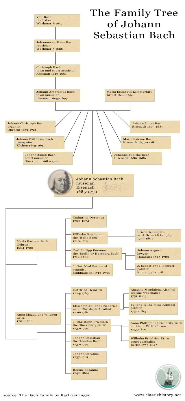 The family tree of Johann Sebastian Bach  A total of seven