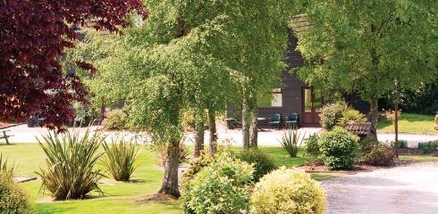 Alpine Park Self-catering holiday accommodation, near Woodbury & Budleigh Salterton, East Devon, EX5