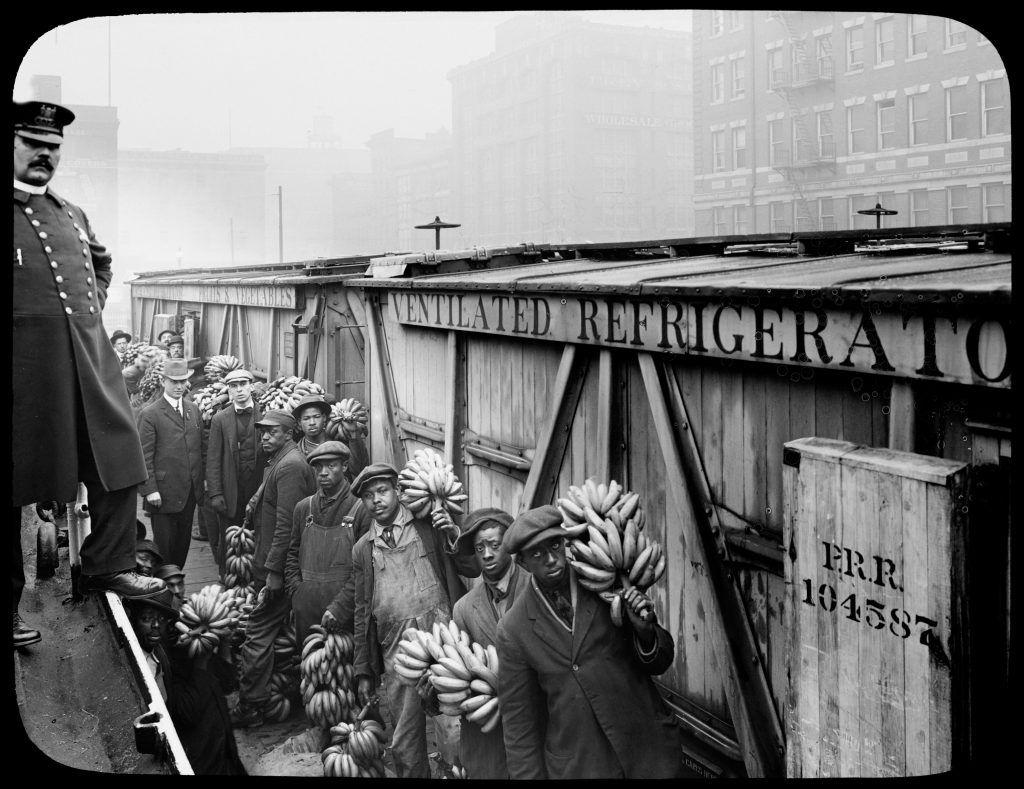 Unloading and Inspecting Banana Shipments Baltimore