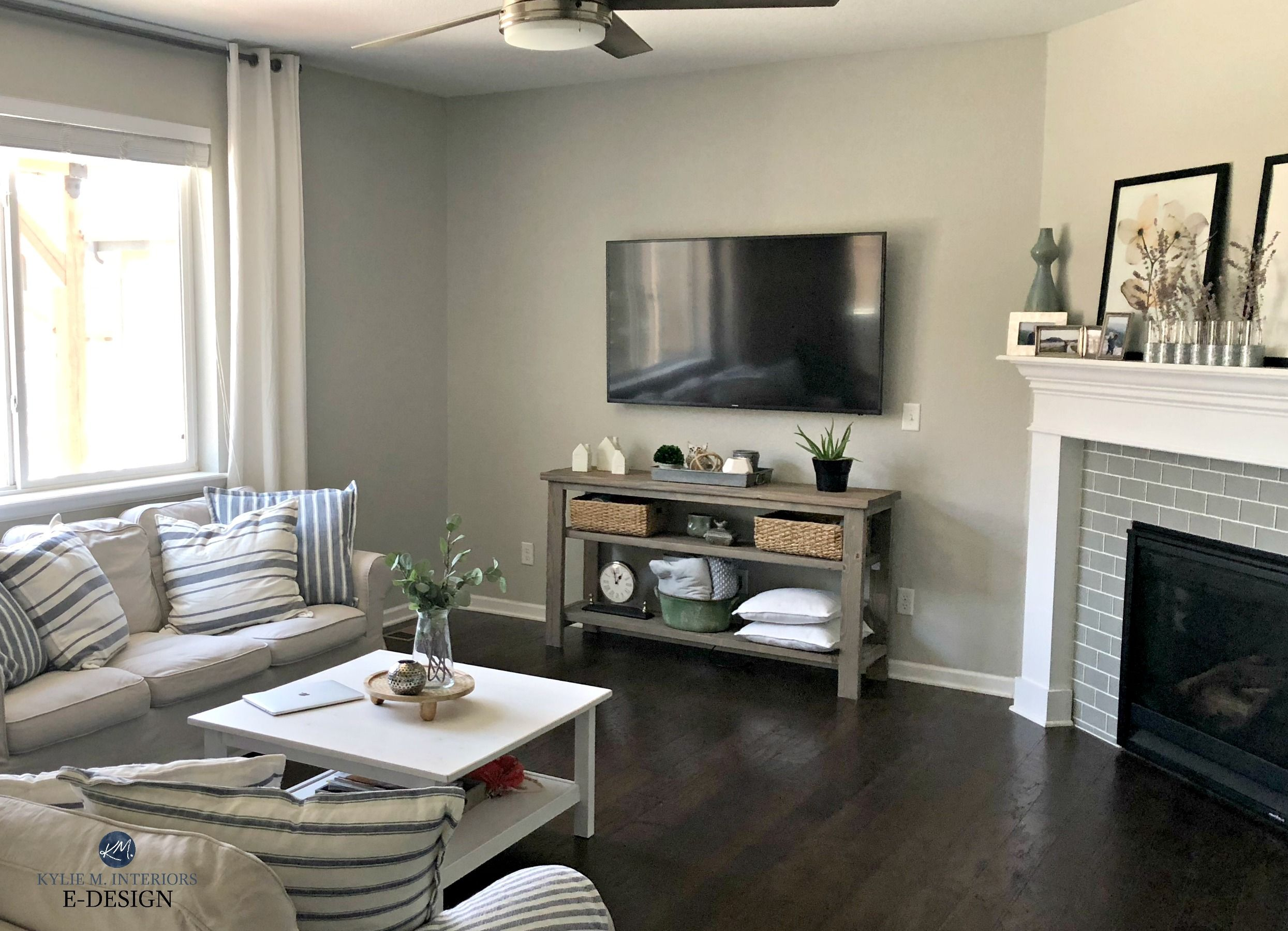 Sherwin Williams Repose Gray in family or living room