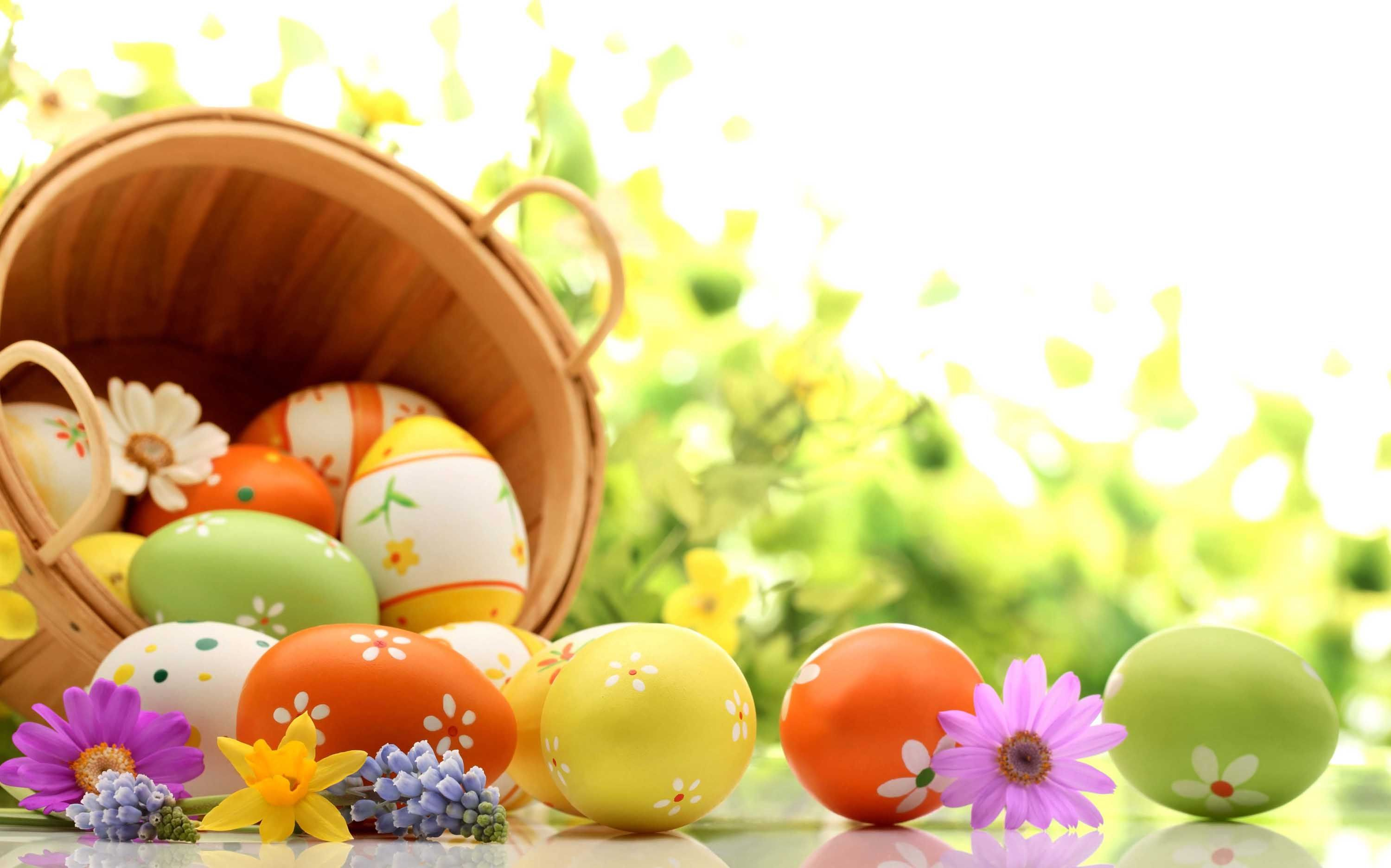 Holidays easter basket of eggs on green background wallpaper holidays easter basket of eggs on green background wallpaper 5950x3715 cool pc wallpapers negle Image collections