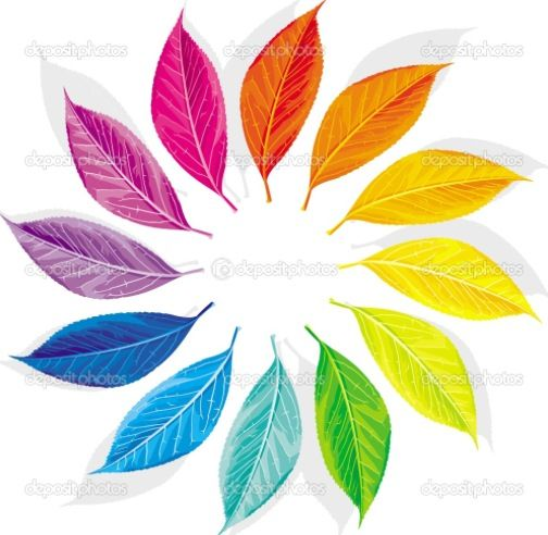 Color Wheel Color Wheel Art Color Wheel Design Color Wheel Art