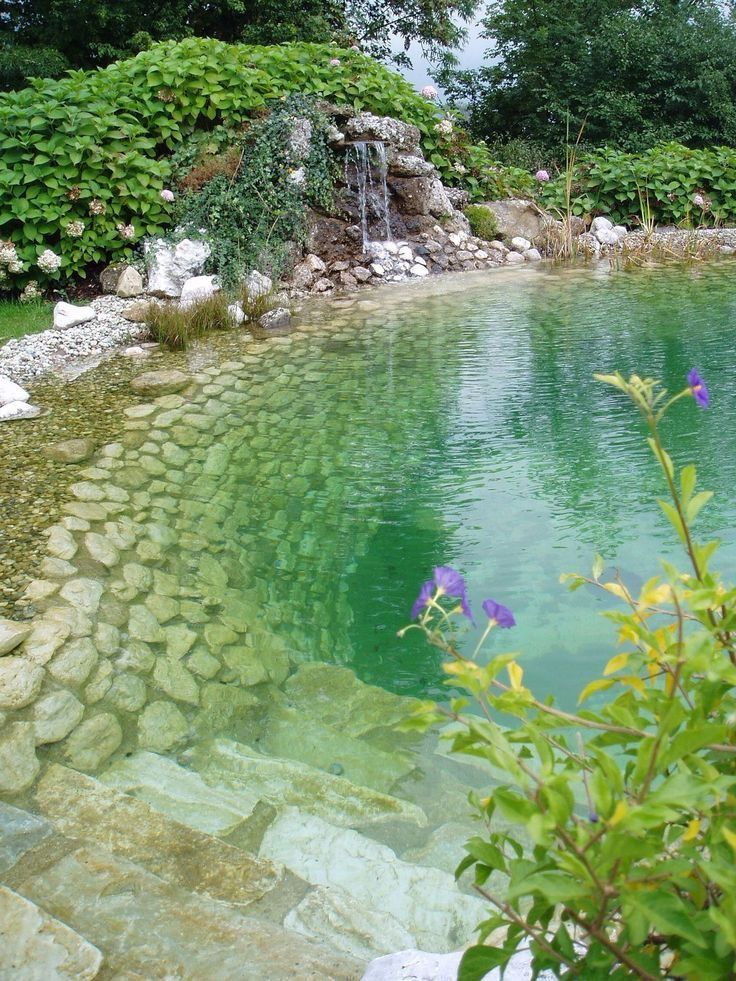 Photo of Piscina natural