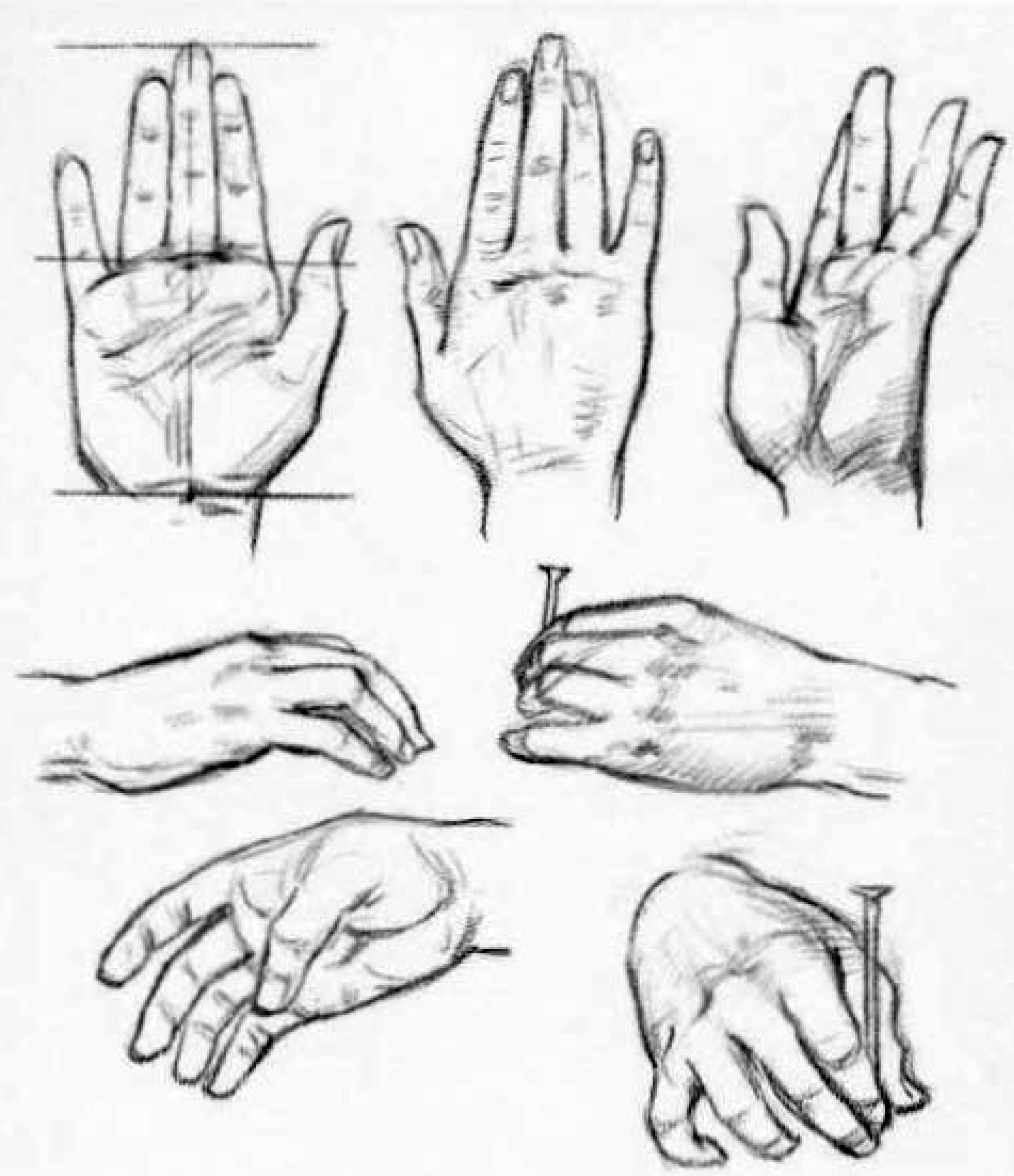 How To Draw Hands Reference Sheets And Guides To Drawing Hands