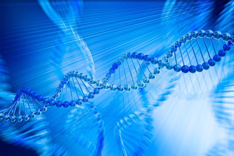 model of sex chromosome evolution game in Barnstaple