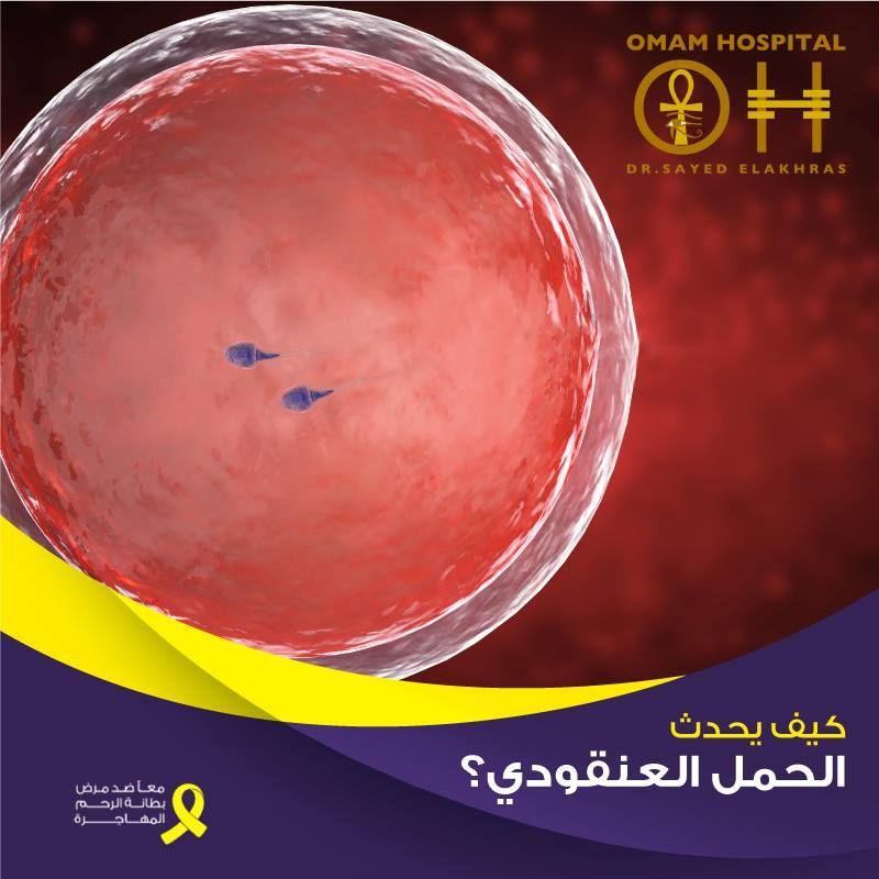 كيف يحدث الحمل العنقودي والحمل العنقودي نوعان إما حمل عنقودي كامل أو حمل عنقودي جزئي تحدث حالات الحمل العنقودي بسبب خلل في المواد الوراثية الكروموسومات في ا