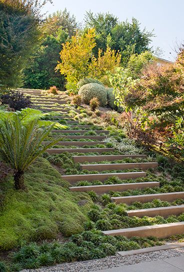 Longfellow Drive Kaa Design Sloped Garden Landscape Stairs Landscape Steps