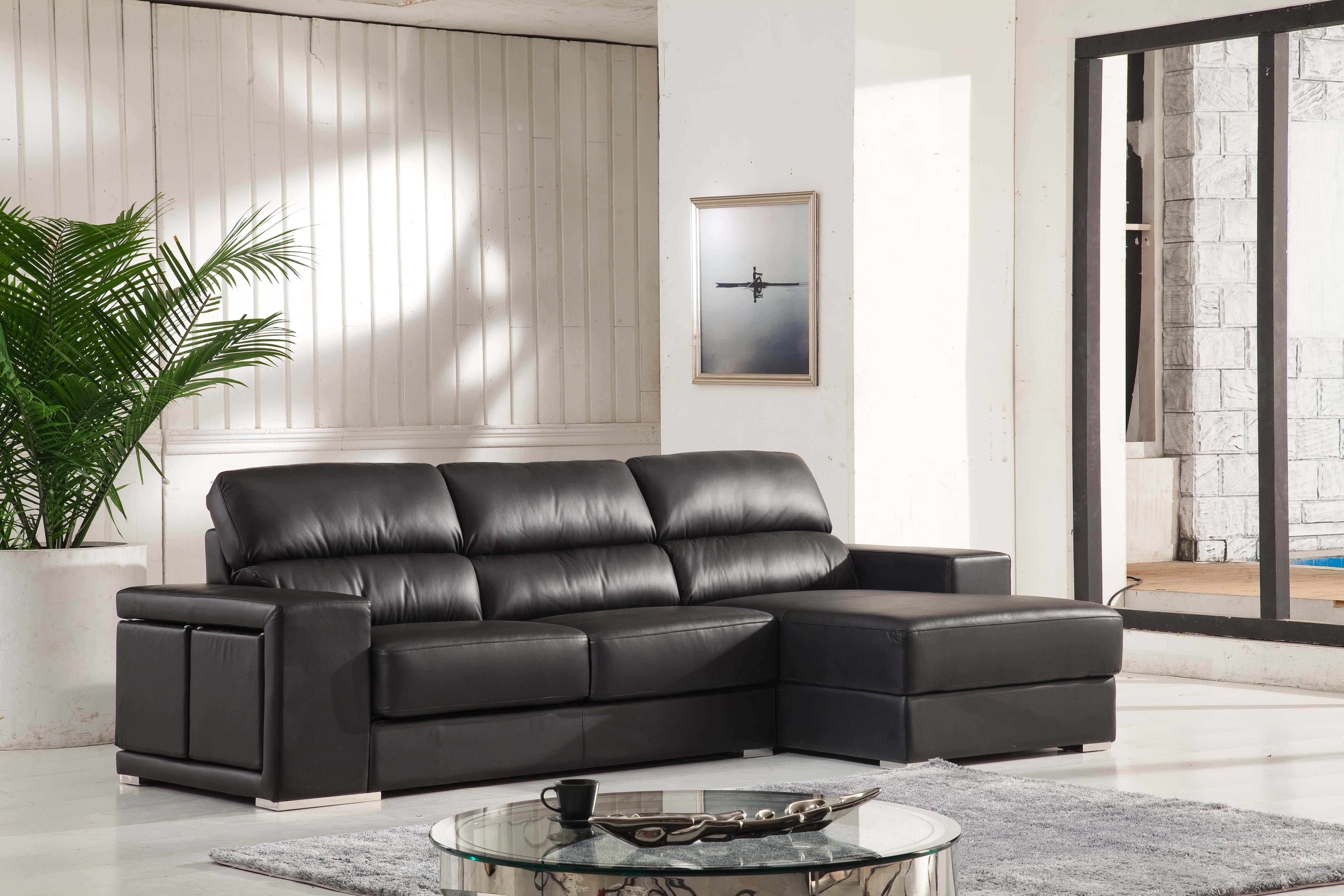 Multifunction Leather Sectional Sofa Chaise (#640)