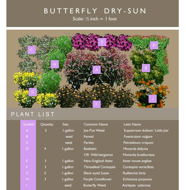 Butterfly Garden Ideas twelve butterfly inspired designs for your garden butterfly raised bed with picket fence Find This Pin And More On Butterfly Garden Ideas