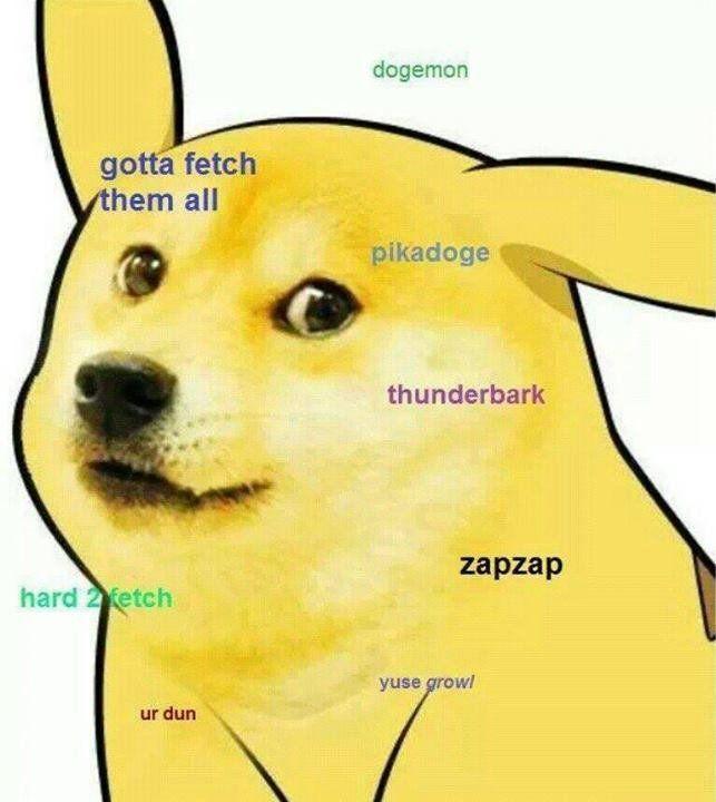 Image 595066 Doge Doge Doge Meme Funny Memes
