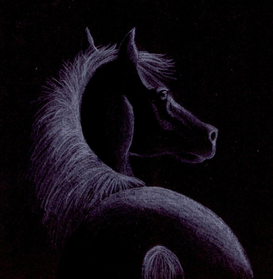 Colored Pencil On Black Paper | scetch on black paper by kittycat727 on deviantART