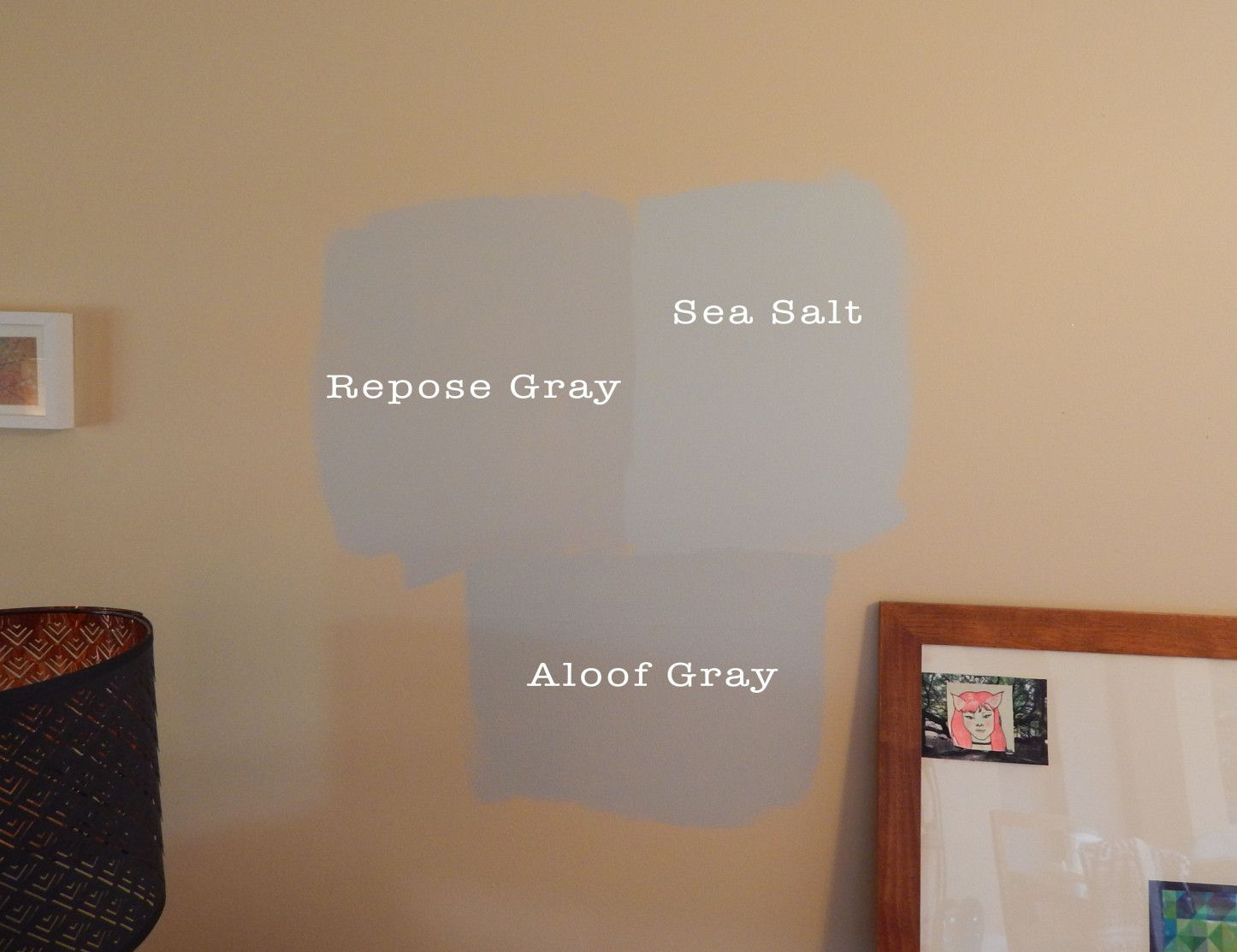 Help My Pick A Paint Color! Survey | Sherwin Williams | Repose Gray | Sea
