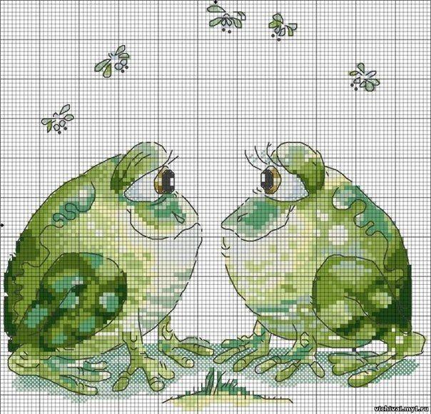 frog cross stitch | Stuff to Buy | Pinterest | Punto de cruz, Puntos ...