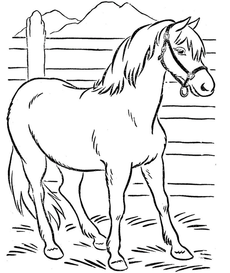 Cool Horse Coloring Pages Printable Free Coloring Sheets Horse Coloring Pages Farm Animal Coloring Pages Animal Coloring Pages