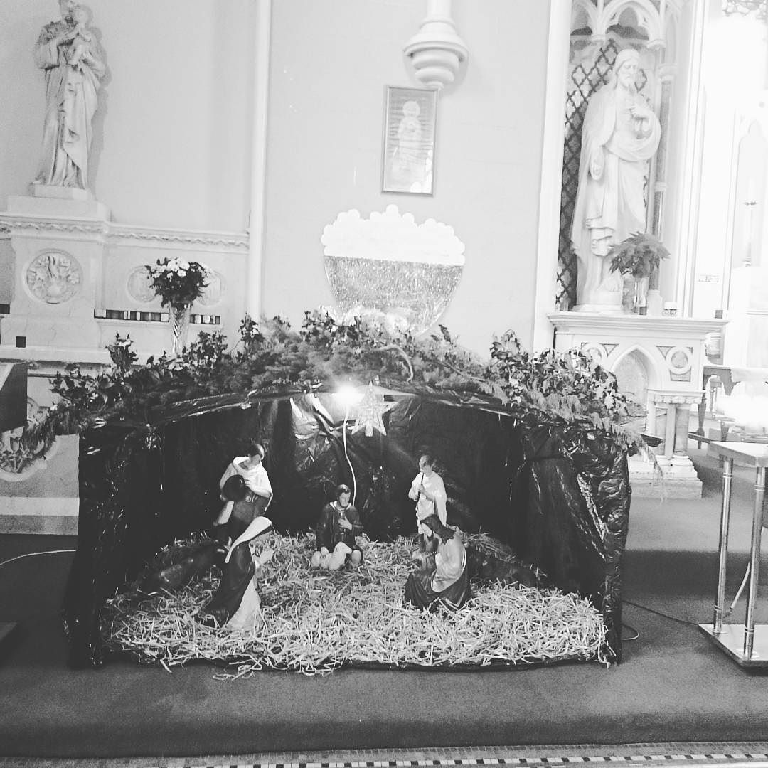 Christmas  nativity in galway #Christmas #Christmasireland #itschristmas