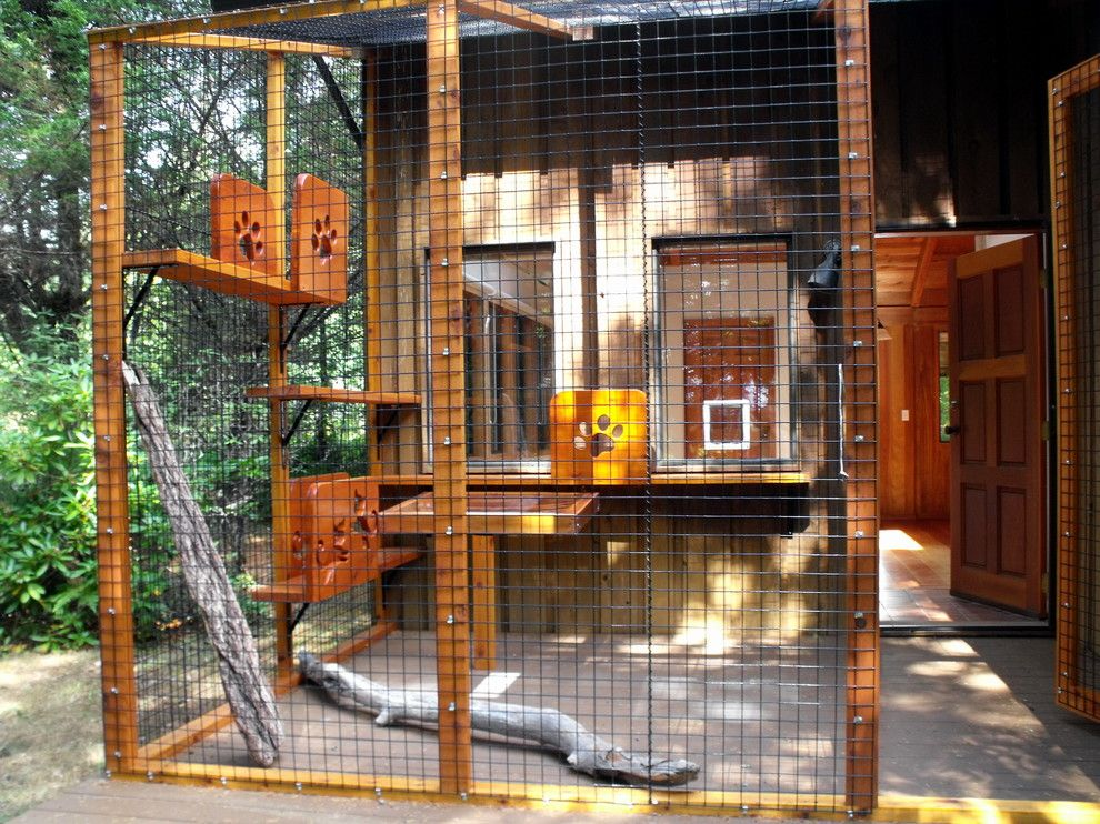 Pin by Merise Kenyon Hetherington on Catio Cat enclosure