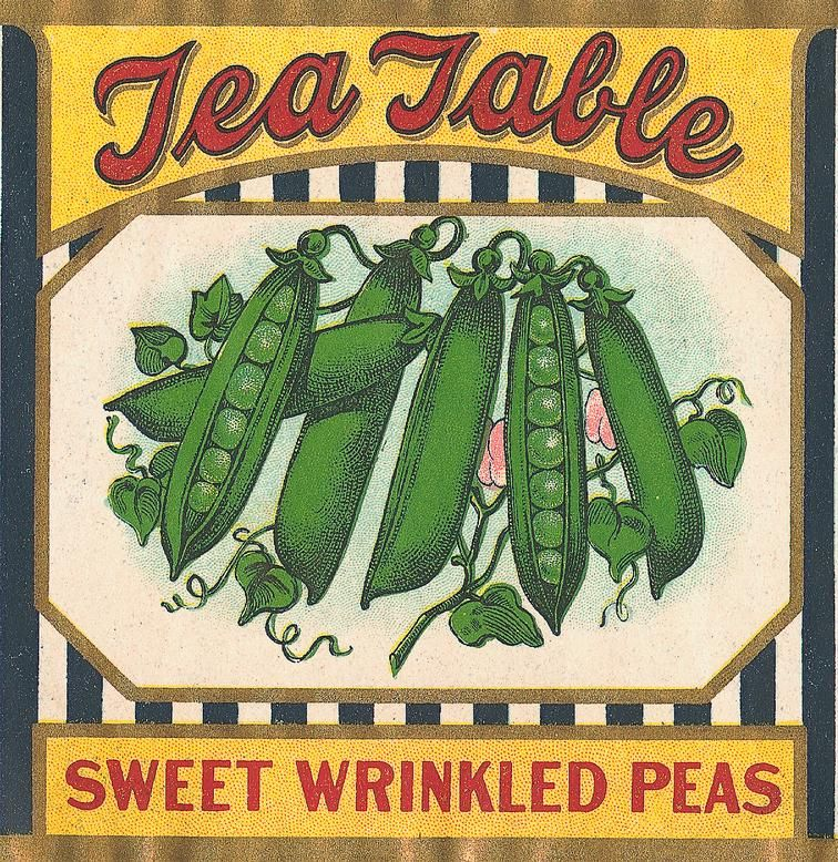 Sisters Warehouse Vintage Vegetable Labels Vegetable
