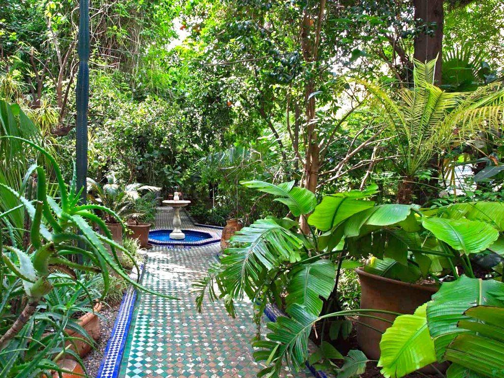 Riad enija courtyard garden marrakech courtyard garden for 10 plants for courtyard gardens design