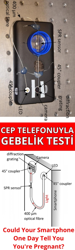 Could Your Smartphone One Day Tell You You are Pregnant? Cep telefonu ile gebelik testi yapmak mümkün mü?