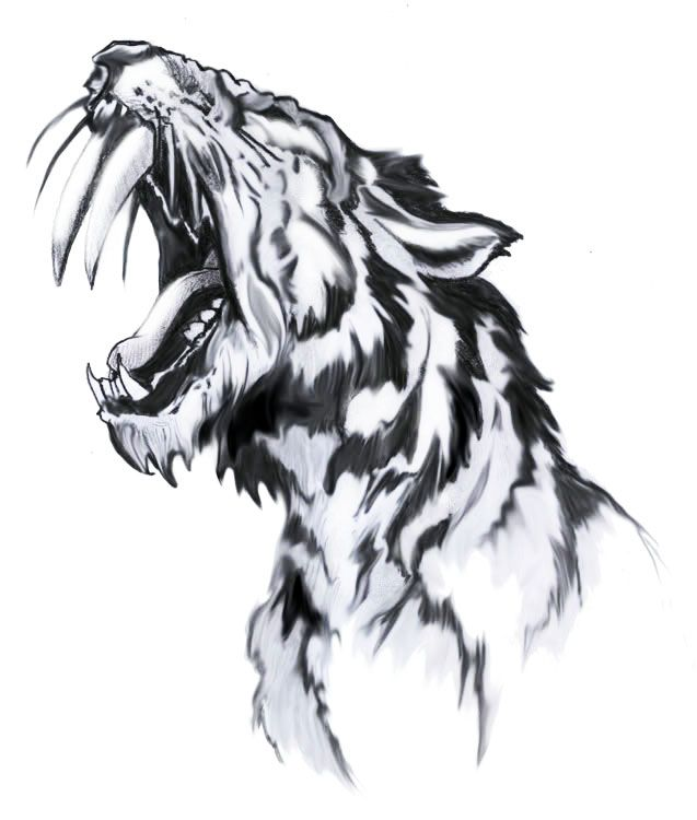 c515083d0 Pin by Tattoo Ideas on Cool Tattoo For Friends | Tiger tattoo, Picture  tattoos, Tiger drawing