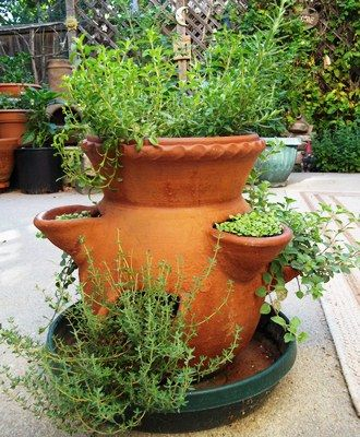 Growing Herbs In A Strawberry Pot   Vegetable Gardener