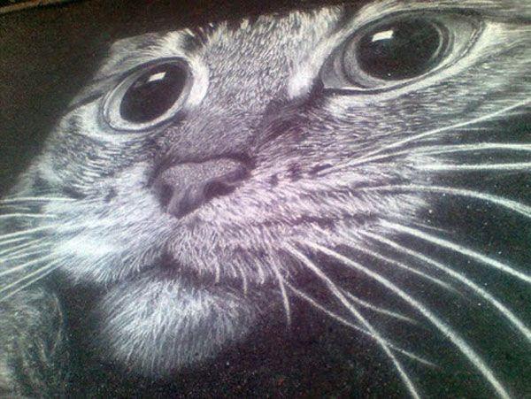 Cat drawn in chalk –Rustam Vallev, Street Art, Public Art, Cat, Chalk