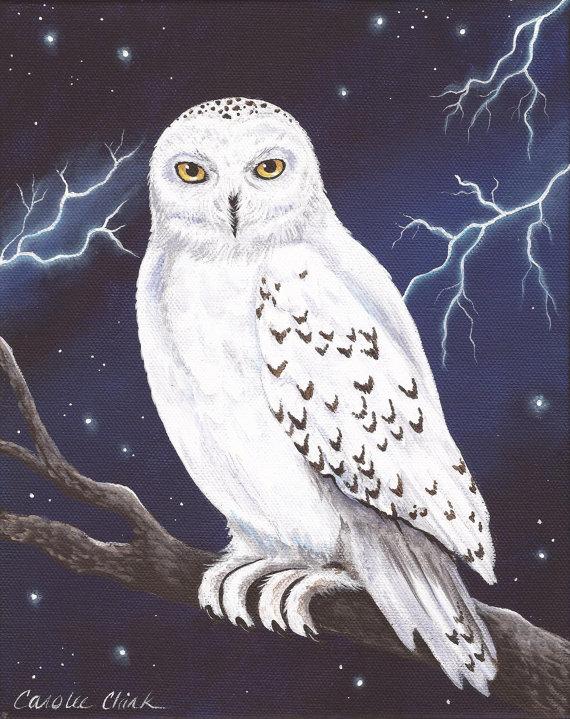 hedwig 8 x 10 print of original acrylic snowy owl painting by rh pinterest com