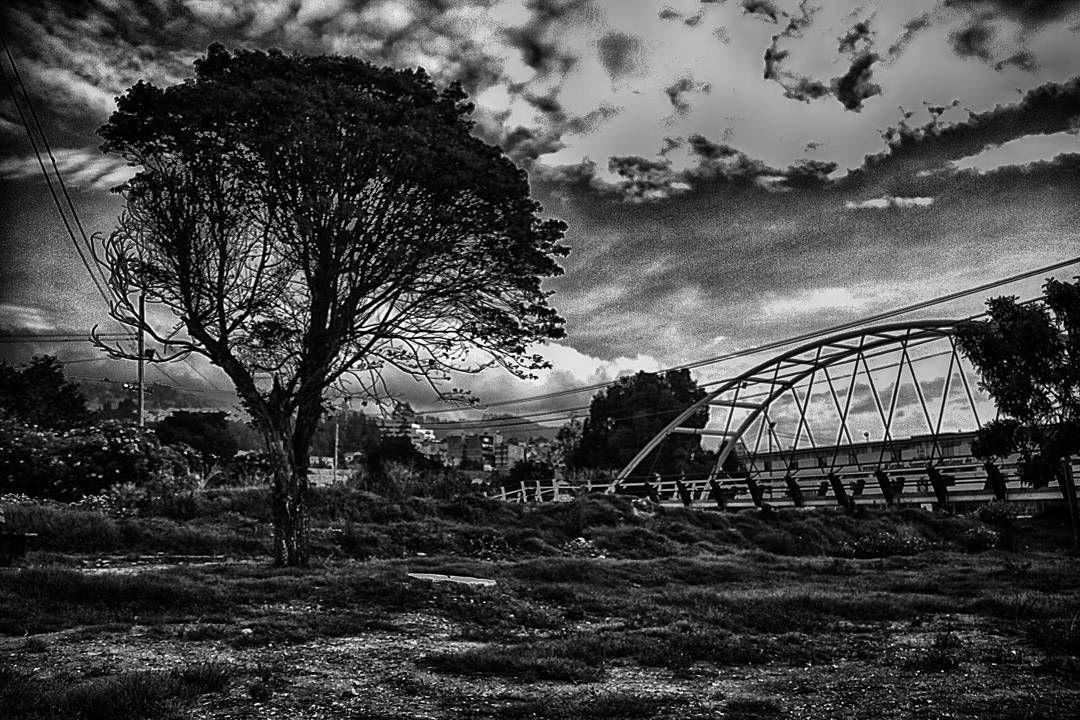 On instagram by humodejuan #landscape #contratahotel (o) http://ift.tt/1WBP89A #trip #tree #clouds #blackandwhitephotography  #naturallight #instacool #photoart #paisajes en la @universidaduptc