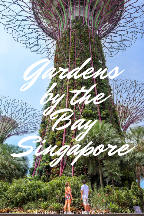 a3f14fdd4d5bbd1430072d60bed677ea - Gardens By The Bay Timings Light Show