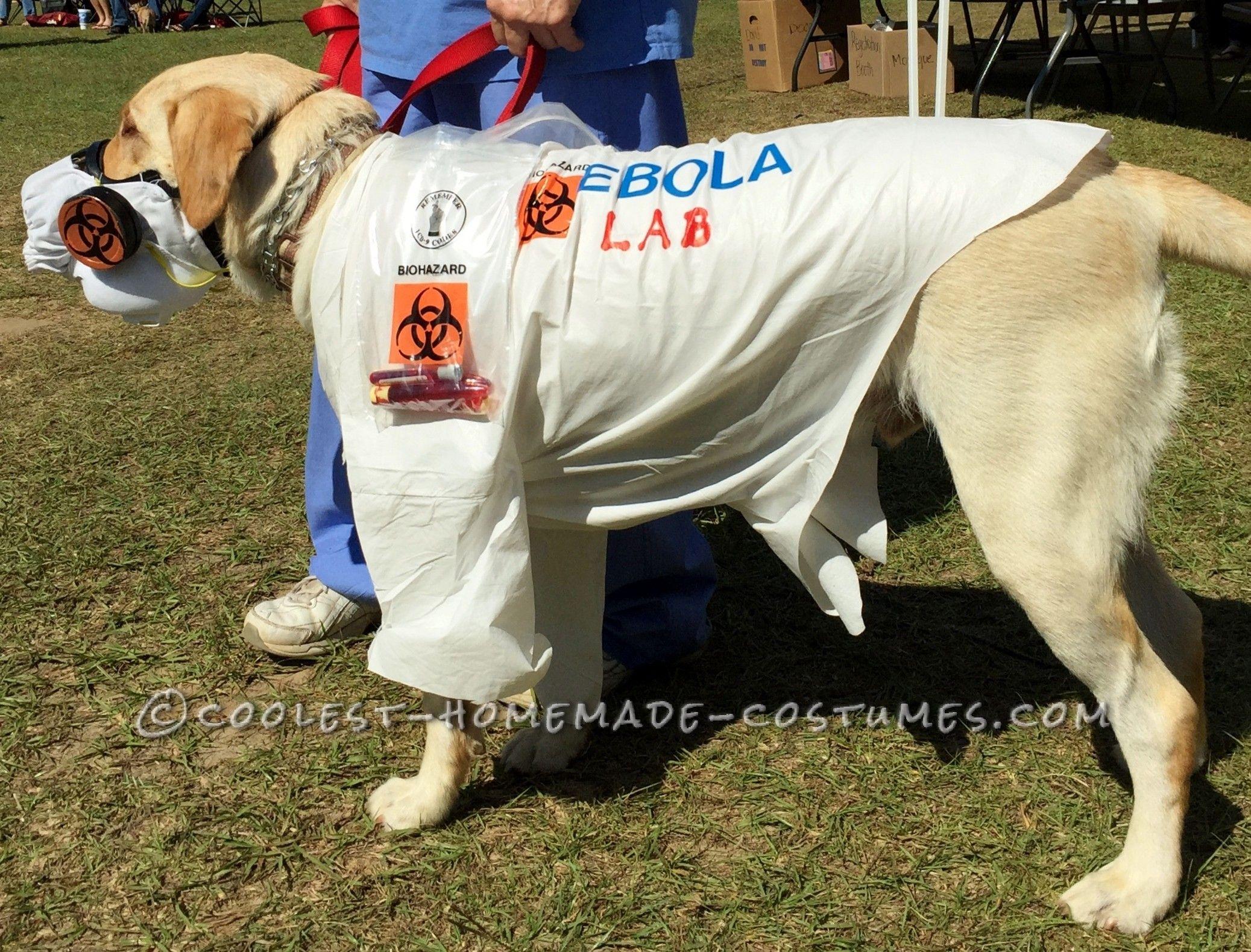 Witty Labrador Retriever Costume Ebola Lab Pet Halloween Costumes Dog Halloween Costumes Cool Halloween Costumes