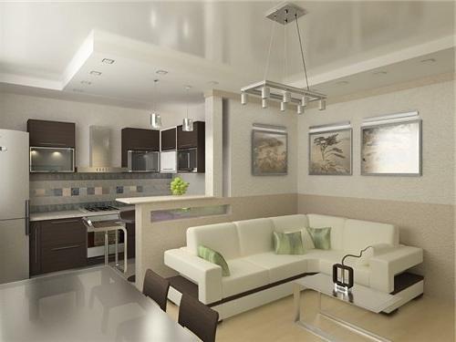 фото зал совмещенный с кухней