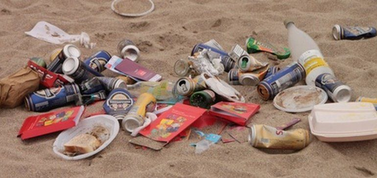 Ellen Macarthur Report More Plastic Than Fish In The Sea By 2050