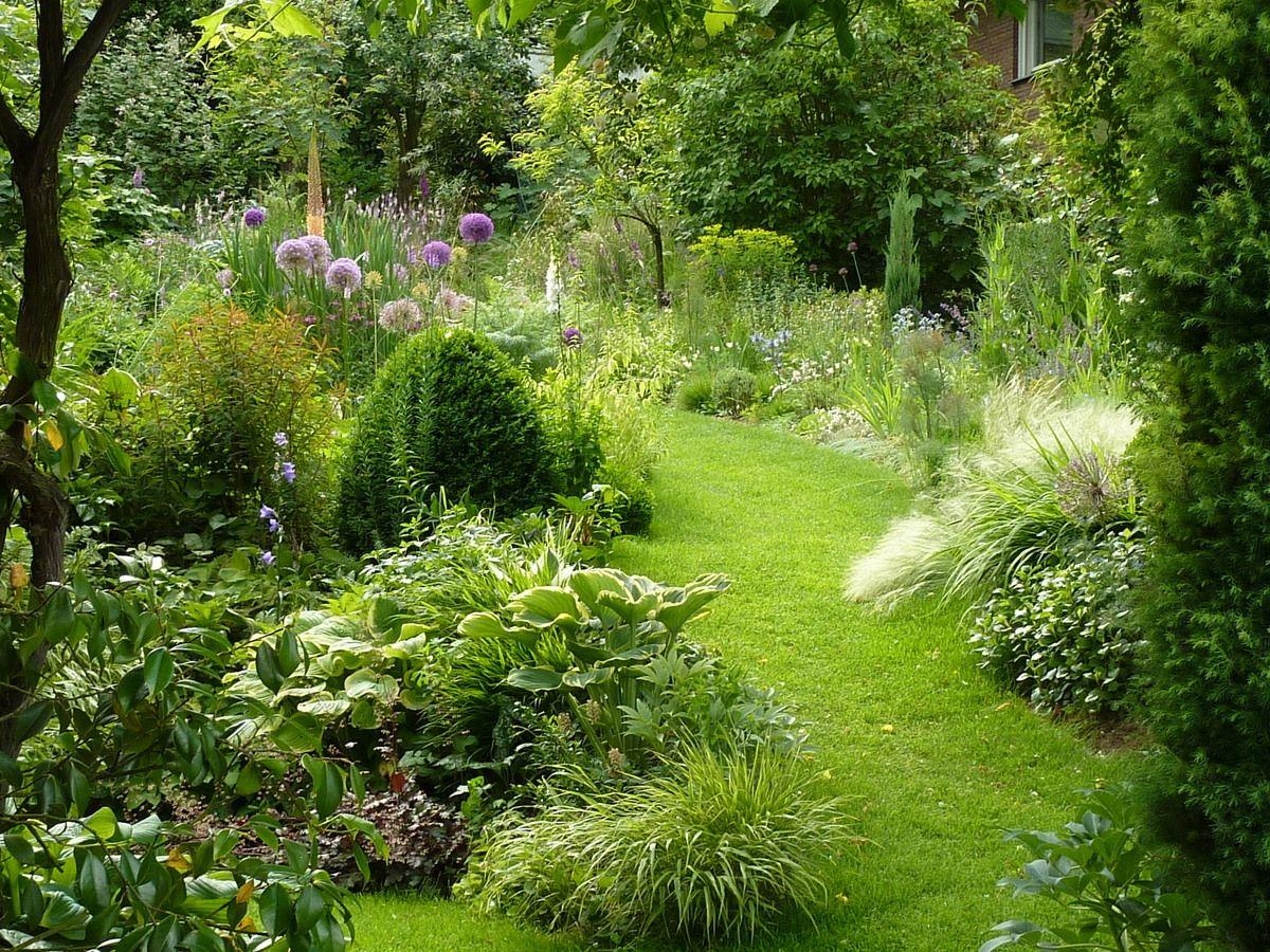 Gartenthusiasten - Jörg Lonsdorf's garden, 750 qm, in Bonn ...